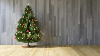 Christmas tree pickup and collection in Brookfield and Elm Grove, WI