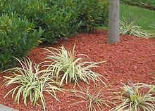 Mulch delivery in Brookfield and Elm Grove, WI