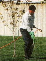 Spraying lawn weeds in Brookfield and Elm Grove, WI