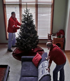 Home Delivery Christmas Trees